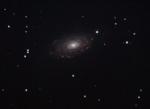 M63 Sunflower Galaxy - Aprile 2010