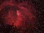 NGC2264 Nebulosa Cono o Albero di Natale